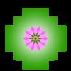 logo chakanaherb Marke